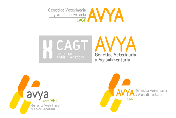 Diseño de logotipos Zaragoza