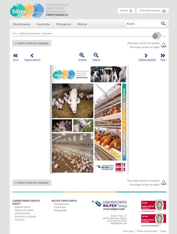 Diseño página web catalogo