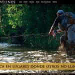 Diseño web Salvelinus