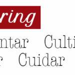Lead Nurturing o cultivo de leads